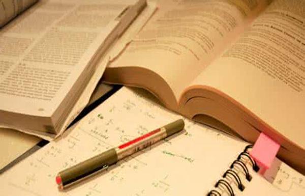 Assignment写作