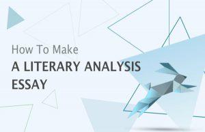 literary analysis essay代写